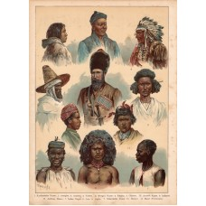 Human species, ethnography, lithography 1880