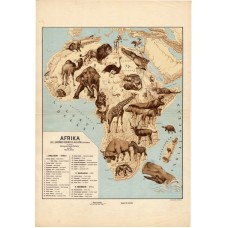 Africa zoogeographical map 1928