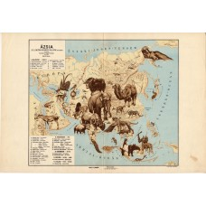Asia zoogeographical map 1928